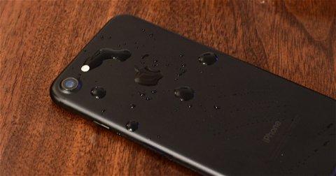 Por qué el arroz no sirve para recuperar un iPhone o iPad mojado